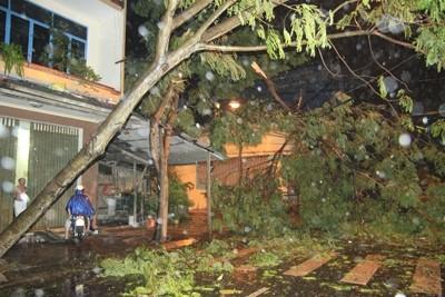 Bão Nari tấn công Đà Nẵng, sóng vò gió giật liên tục