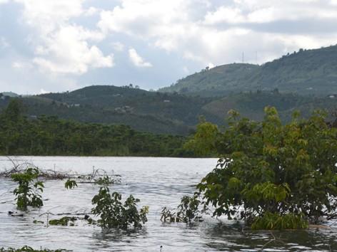 Hãi hùng thủy điện tích nước