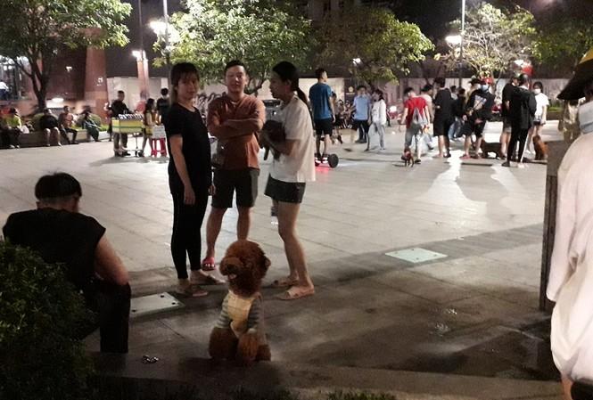 Phố đi bộ Nguyễn Huệ thành 'phố hàng rong', nơi cún cưng...phóng uế