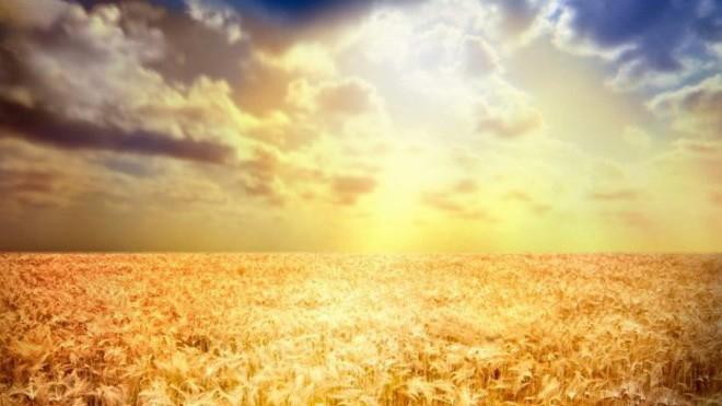 Đột phá y học: Xét nghiệm ung thư bằng ánh mặt trời