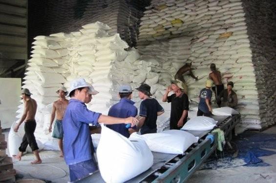 Giá gạo xuất khẩu giảm làm nhóm hàng nông sản bị giảm khoảng 160 triệu đô la trong quí 1. Ảnh TL SGT