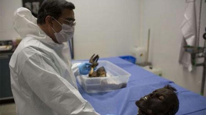 Tiến sĩ Alejandro Hernández Cárdenas chuẩn bị cho các phần thi thể người chết héo quắt vào bồn ngâm tẩm hóa chất đặc biệt. Ảnh: Polaris/eyevine