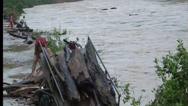 người dân đua nhau vớt củi trên dòng sông bằng các vật dụng thô sơ