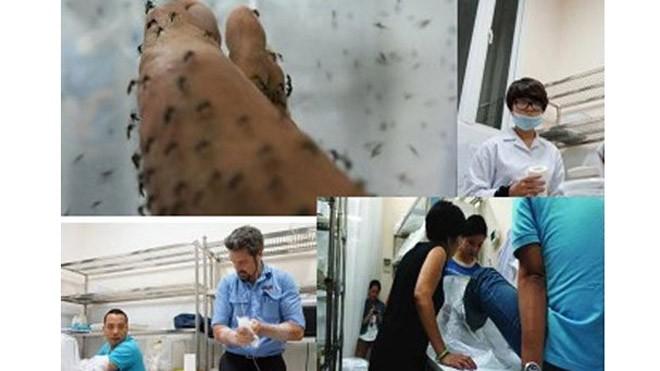 """Các chuyên gia y tế thử nghiệm cho muỗi ăn máu người để nghiên cứu dự án """"tiêm vắc-xin cho muỗi""""."""