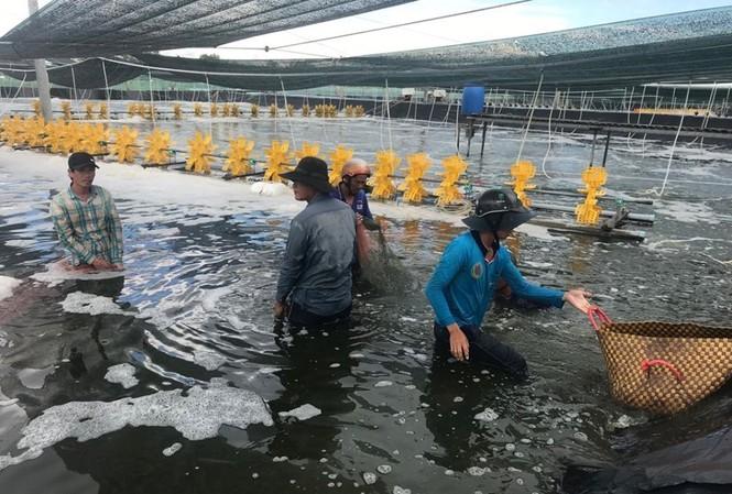 Bà Phạm Thị Ngọc Quỳnh, người đưa MC Fish Việt Nam vượt biển