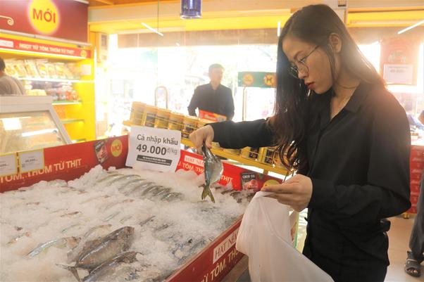 Chị Trang tranh thủ đi từ sớm để thỏa sức chọn mẻ cá tươi ngon nhất