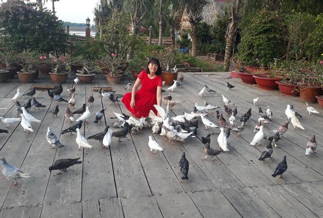 Những chú chim bồ câu lễ tân hiếu khách