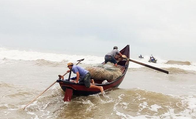 Ngư dân vượt sóng dữ kiếm 'lộc trời' ngày 30 Tết
