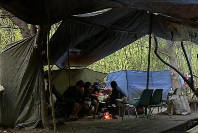 Một bãi ém quân trong rừng của người Việt ở Pháp