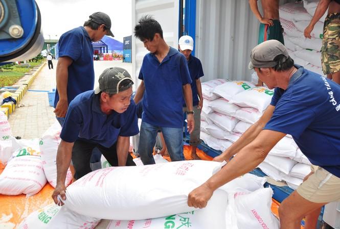 Sau lùm xùm xuất khẩu gạo, lại lộ ra hàng loạt bất cập trong quản lý, đấu thầu gạo dự trữ Ảnh minh họa của Hòa Hội