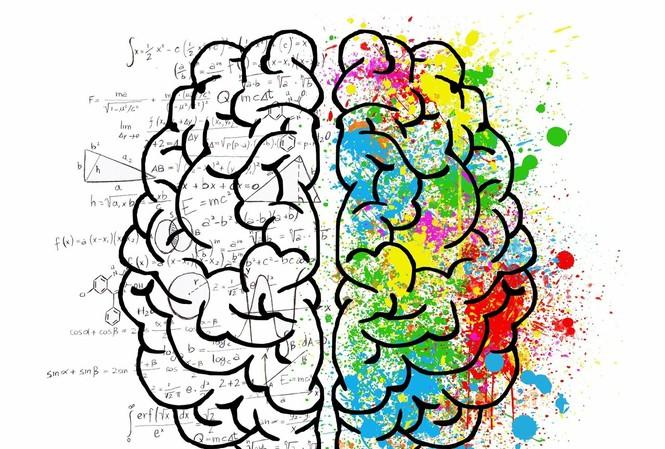 """"""" Đồng hồ biểu sinh"""" có thể đo được tốc độ lão hoá của não bộ chính xác hơn các công cụ khác."""