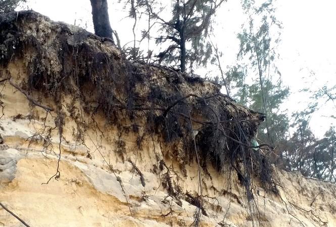 Nạn xâm thực bờ biển diễn ra dữ dội và nguy hiểm tại xã Phú Thuận, huyện Phú Vang, tỉnh TT-Huế