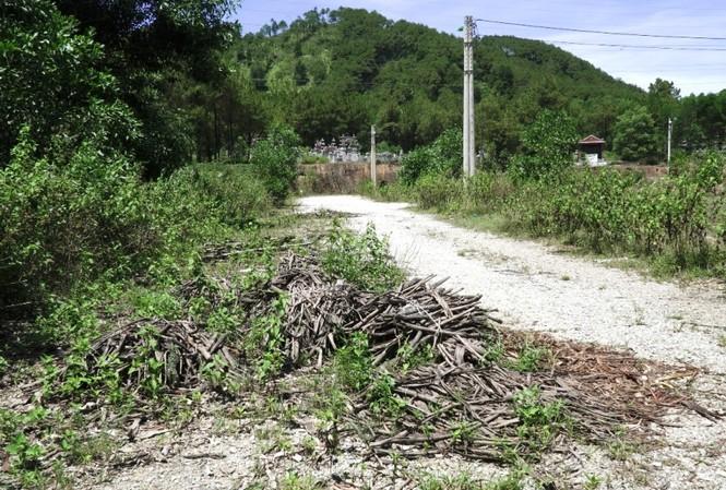 Dự án khu quy hoạch tập trung kinh doanh phế liệu phường Thủy Châu hiện bỏ hoang lãng phí sau khi hoành thành xây dựng do vướng Luật đất đai khi đấu giá thuê đất. Tỉnh TT-Huế sẽ xin ý kiến Bộ TNMT để có hướng xử lý dứt điểm.