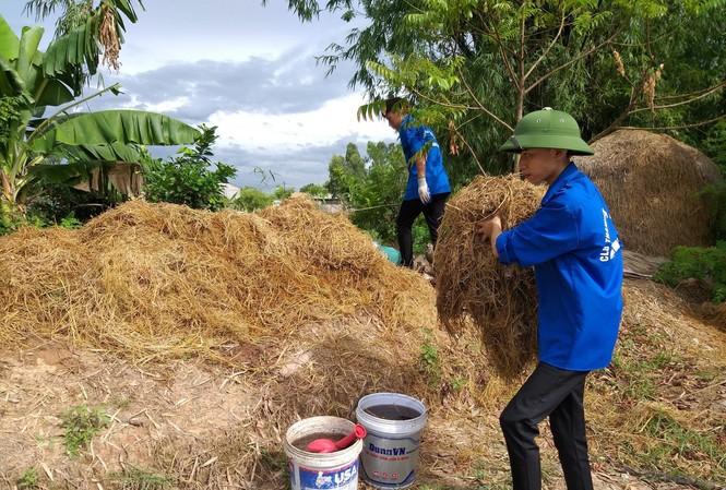 Vũ Trung Kiên và đồng đội tiến hành ủ rơm rạ, biến chúng thành sản phẩm hữu ích.
