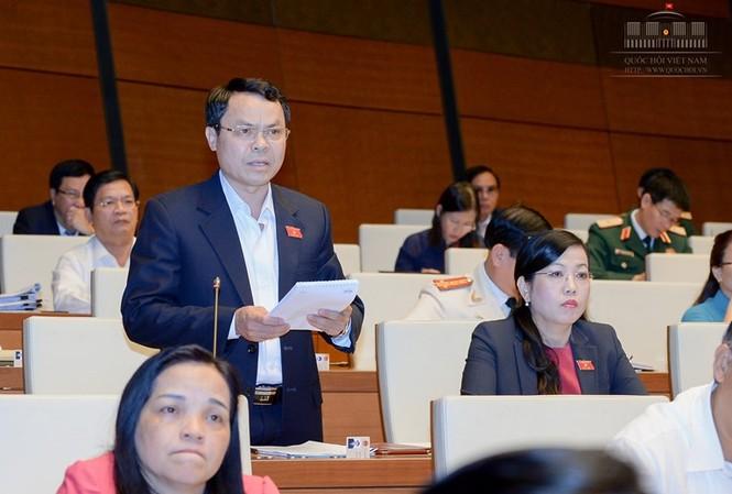 Đại biểu Quốc hội Nguyễn Tiến Sinh.