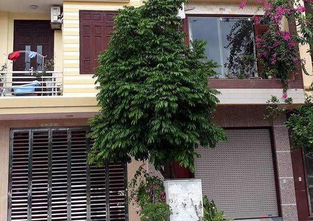 Căn nhà cua gia đình ông Đặng Xuân Hậu, Chủ tịch UBND kiêm Trưởng ban giảm nghèo phường Lê Hồng Phong, TP Thái Bình. Ảnh: TH