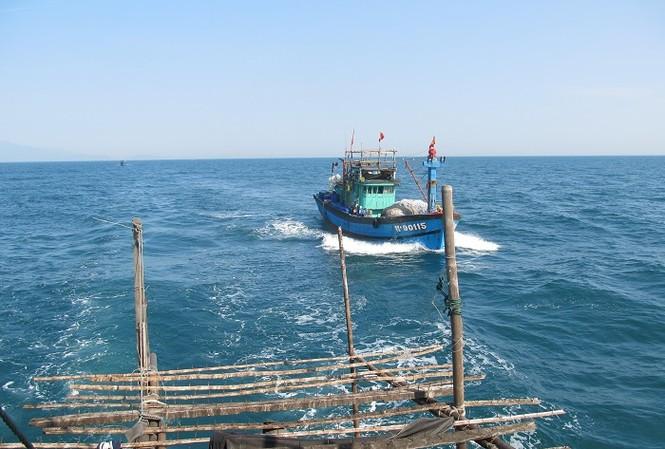 Ngư dân miền Trung đánh bắt từ biển Đông trở về Đà Nẵng (ảnh minh họa)