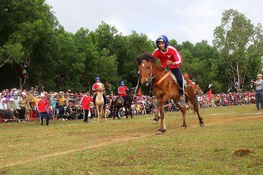 Đua ngựa tại Tuy An, Phú Yên. Ảnh: Văn Tài