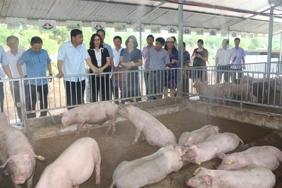 Bộ trưởng NN&PTNT Nguyễn Xuân Cường đặc biệt ấn tượng với mô hình liên kết chăn nuôi an toàn sinh học của Tập đoàn Quế Lâm.