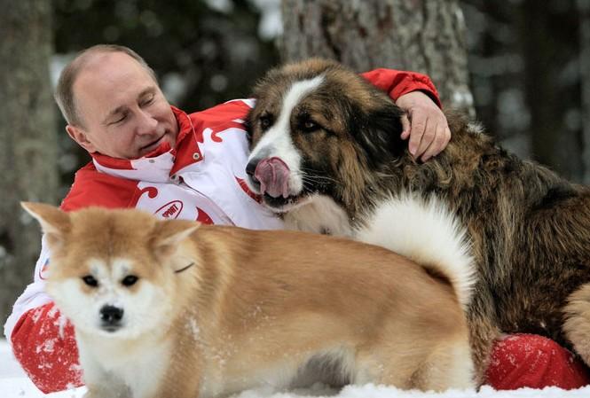 Tổng thống Nga Vladimir Putin cùng 2 chú cún cưng  Yum và Buffy