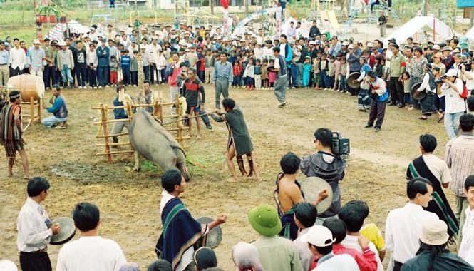 Lễ hội đâm trâu.  ảnh: H.H.N