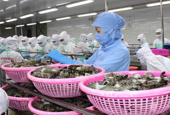 Nhiều mặt hàng thủy sản của Việt Nam sẽ rộng cửa hơn vào EU khi Hiệp định EVFTA có hiệu lực