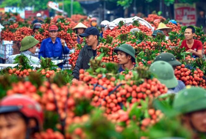 Các ngành viễn thông, công nghệ thông tin, dệt may, giày dép và nông nghiệp là những lĩnh vực Việt Nam hưởng lợi khi tham gia RCEP