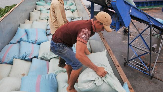 Hoạt động xuất nhập khẩu đường biển bị ảnh hưởng nghiêm trọng sau khi Hanjin đệ đơn phá sản. Ảnh minh họa: Tuấn Nguyễn