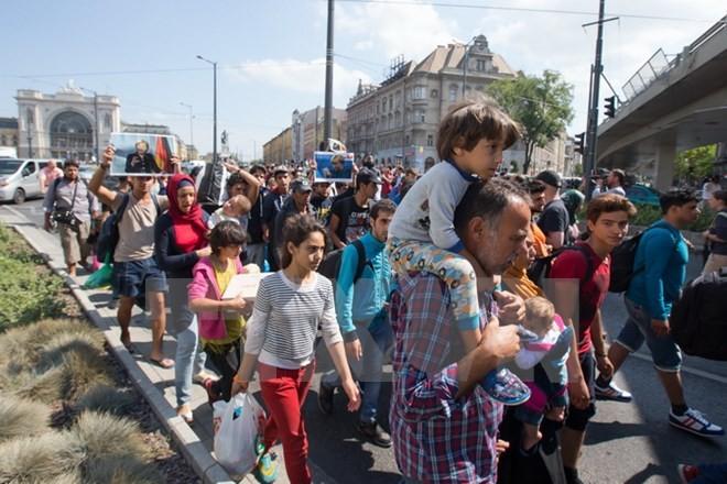 Người di cư đi bộ tới Áo từ nhà ga Keleti ở Budapest, Hungary ngày 4/9. (Nguồn: THX/TTXVN)