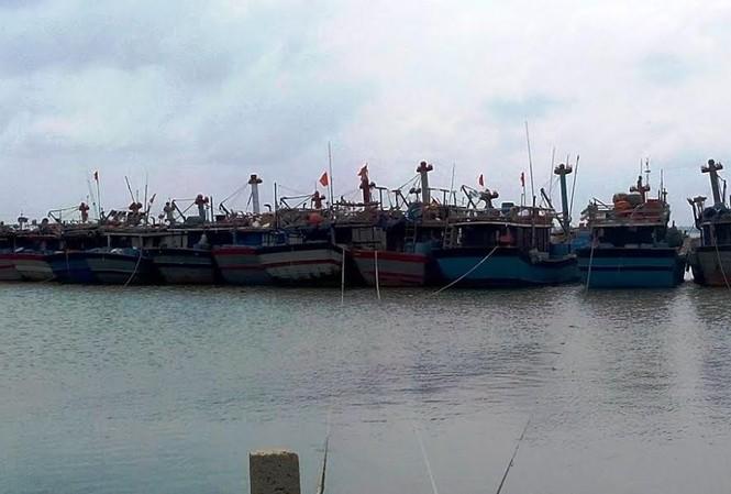 Tàu thuyền đánh bắt trên biển được gọi vào bờ an toàn và bố trí xong nơi trú tránh bão số 7.
