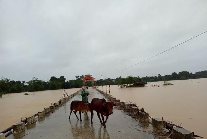 Tại huyện Hương Khê, nước lũ dâng cao làm cô lập nhiều xã