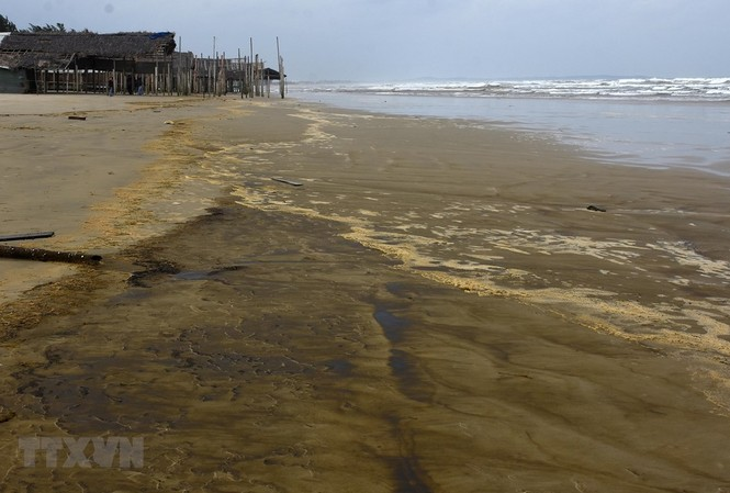 Nước biển đổi màu cà phê ở Quảng Ngãi. Ảnh: TTXVN