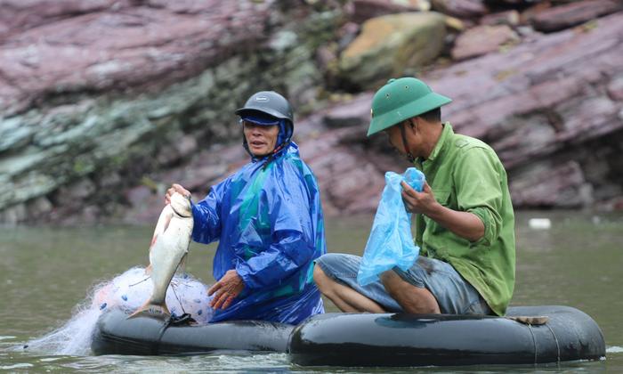 Săn cá 'khủng' khi hồ Kẻ Gỗ dừng xả lũ