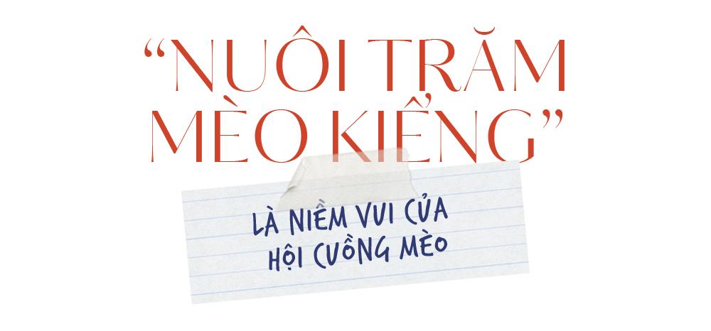 THPT Nguyễn Thị Minh Khai: Ai rồi cũng sẽ nhớ thương - ảnh 11