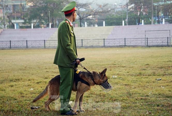Công an tỉnh Điện Biên huy động nhiều chó nghiệp vụ tuần tra, rà soát an ninh, bảo vệ phiên tòa.