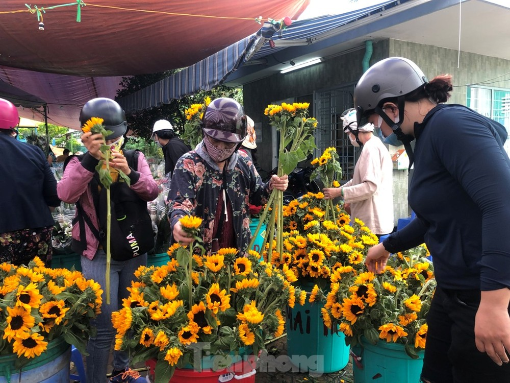 TPHCM: Chợ hoa Hồ Thị Kỷ 'xả hàng' kéo khách