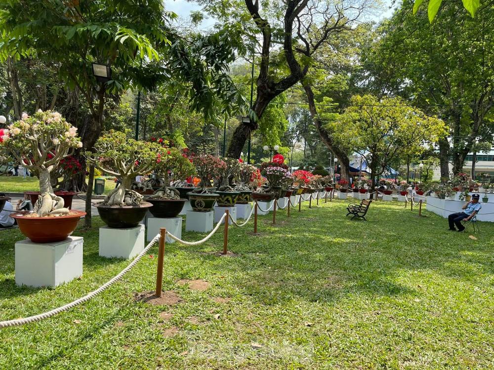Nơi quy tụ 'kỳ hoa dị thảo' bậc nhất TPHCM vắng lặng khác thường