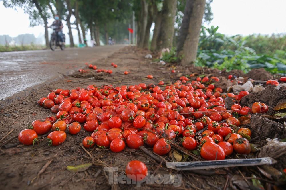 200 tấn rau củ quả 'ế', người dân Hà Nội đổ bỏ dọc đường