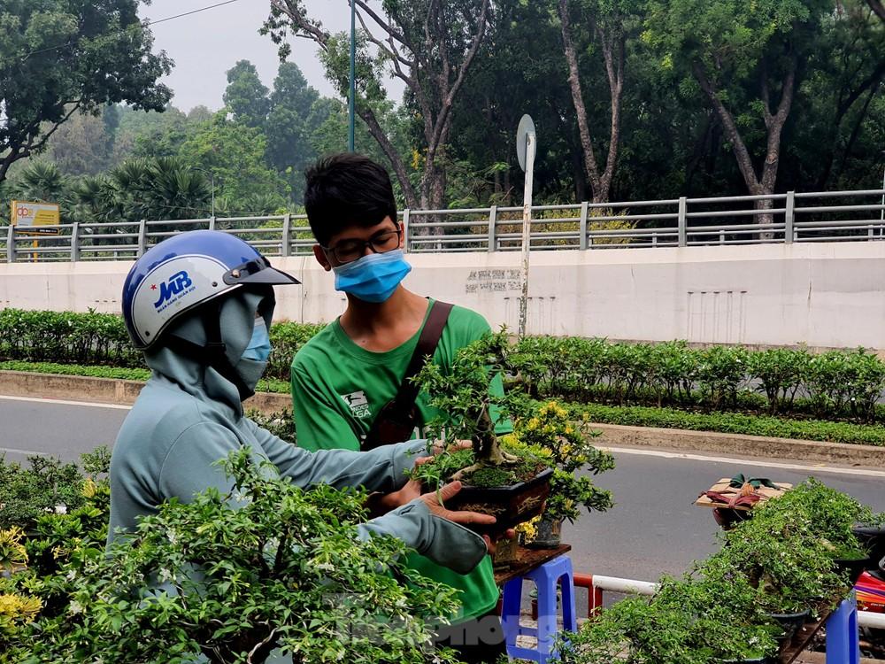 Bonsai mini 'độc lạ' tiền triệu hút khách tại chợ hoa Tết