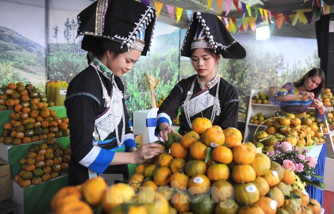 Tuần lễ quýt ngọt biên giới Mường Khương tại Hà Nội - ảnh 3