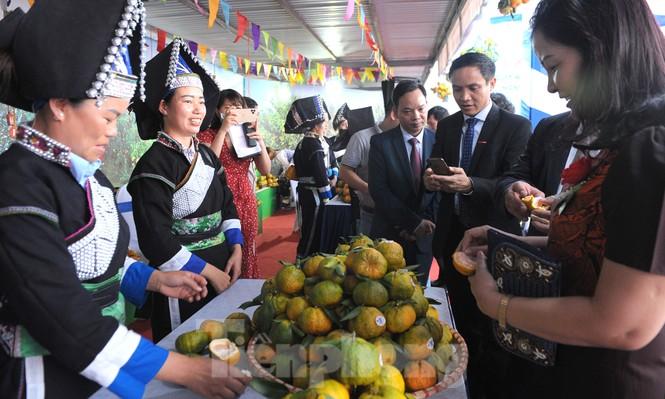 Tuần lễ quýt ngọt biên giới Mường Khương tại Hà Nội - ảnh 5