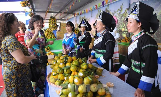 Tuần lễ quýt ngọt biên giới Mường Khương tại Hà Nội - ảnh 6