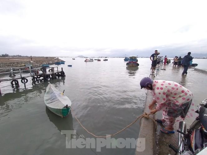 Khánh Hoà khẩn trương đưa lồng bè ngư dân vào bờ để tránh bão 12 - ảnh 1