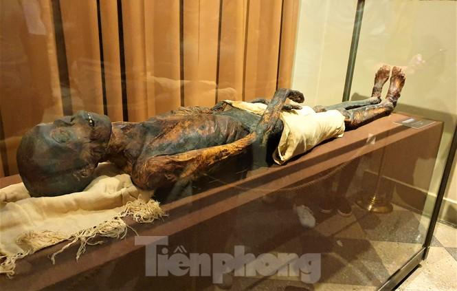 Lạc bước trong Bảo tàng Hermitage diễm lệ - ảnh 12