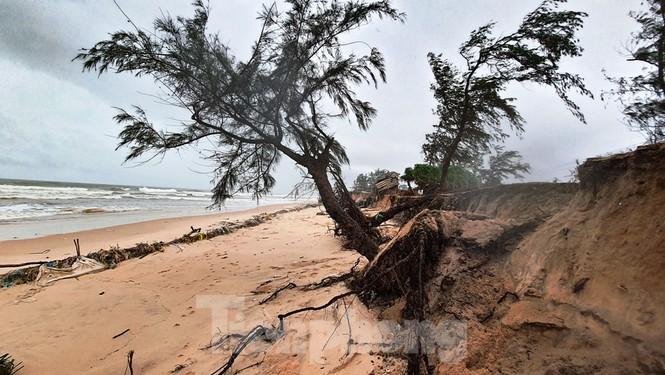 Bão tan lũ rút, bờ biển Thừa Thiên Huế tan hoang như trúng bom - ảnh 25