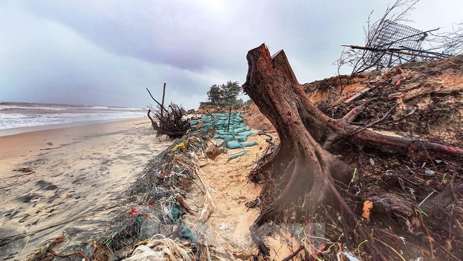 Bão tan lũ rút, bờ biển Thừa Thiên Huế tan hoang như trúng bom - ảnh 4