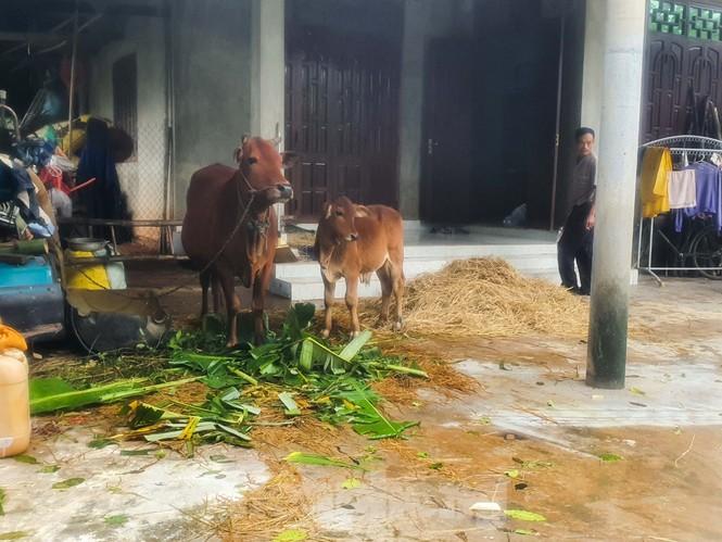 Người dân Quảng Trị mòn mỏi chờ lũ rút để được nấu cơm - ảnh 19