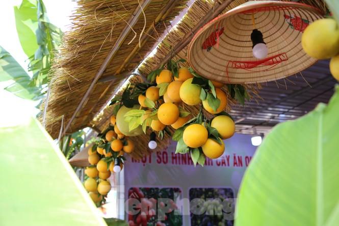 Đặc sắc hội chợ cam, bưởi ở Bắc Giang - ảnh 9