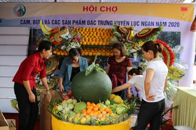 Đặc sắc hội chợ cam, bưởi ở Bắc Giang - ảnh 7