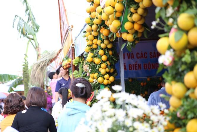 Đặc sắc hội chợ cam, bưởi ở Bắc Giang - ảnh 4